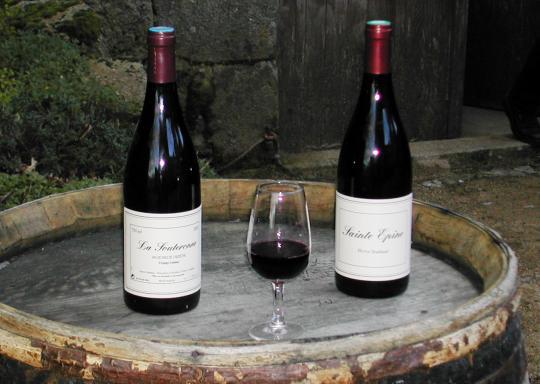Etiquette bouteilles de vin